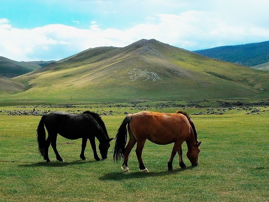 Mongolian Horses | ZEISS CY SONNAR 180MM F2.8 <br> Click image for more details, Click <b>X</b> on top right of image to close