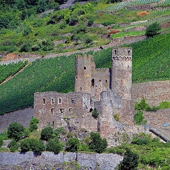 Castle ruin at the Rhine River | LENS MODEL NOT SET <br> Click image for more details, Click <b>X</b> on top right of image to close