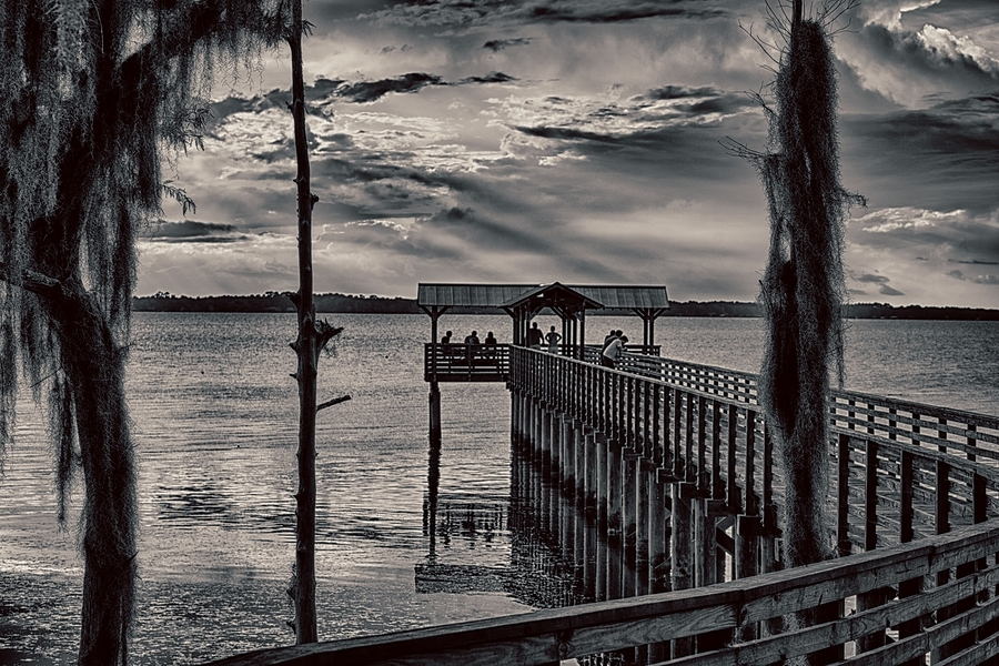 St John's River - Alpine Grove Park -BW | ZEISS 85MM F1.8 SONNAR <br> Click image for more details, Click <b>X</b> on top right of image to close