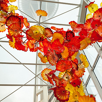 Chihuly Gardens with Seattle Center | ZEISS DISTAGON F2.0 35MM