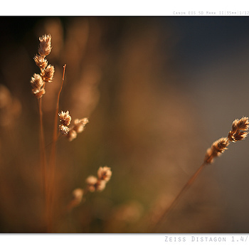 Photo: 4400