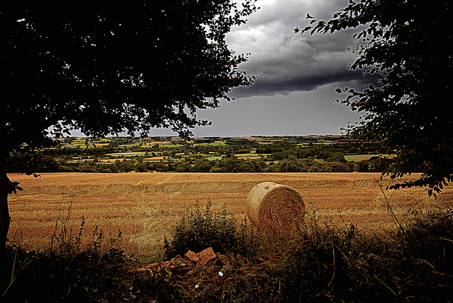Cotswold Haystack | ZEISS ZM BIOGON F2.8 21MM <br> Click image for more details, Click <b>X</b> on top right of image to close