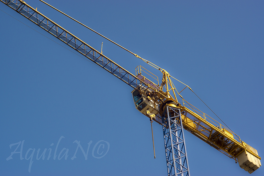 Some colourful Crane | ZEISS JENA PRAKTICAR 50MM F1.4 <br> Click image for more details, Click <b>X</b> on top right of image to close