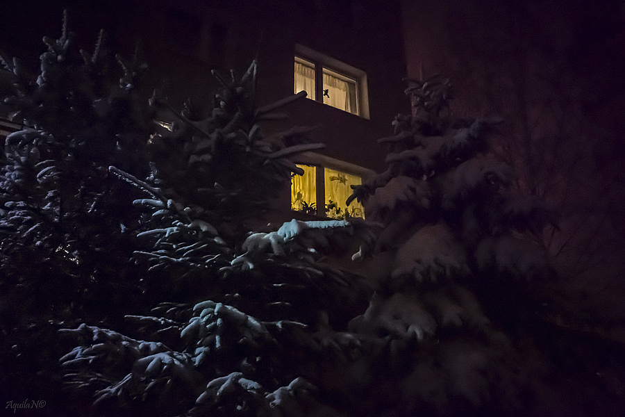 Snow at neighbourhood | ZEISS G HOLOGON 16MM F8 <br> Click image for more details, Click <b>X</b> on top right of image to close