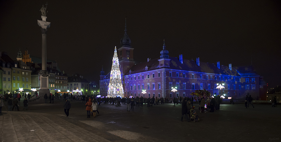 Y2013's Xmas Tree at Royal Castle Sq. | ZEISS JENA FLEKTOGON F2.8 20MM <br> Click image for more details, Click <b>X</b> on top right of image to close