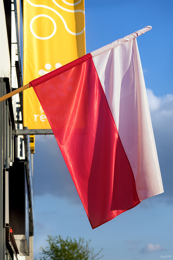 Polish Flag Day | ZEISS JENA CZJ BIOMETAR 120MM F2.8 <br> Click image for more details, Click <b>X</b> on top right of image to close