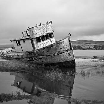 SS Point Reyes | ZEISS DISTAGON F2.8 21MM <br> Click image for more details, Click <b>X</b> on top right of image to close