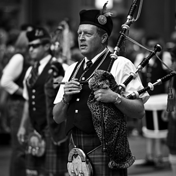 Photo: Piper
