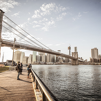 Brooklyn Bridge | ZEISS DISTAGON F3.5 18MM