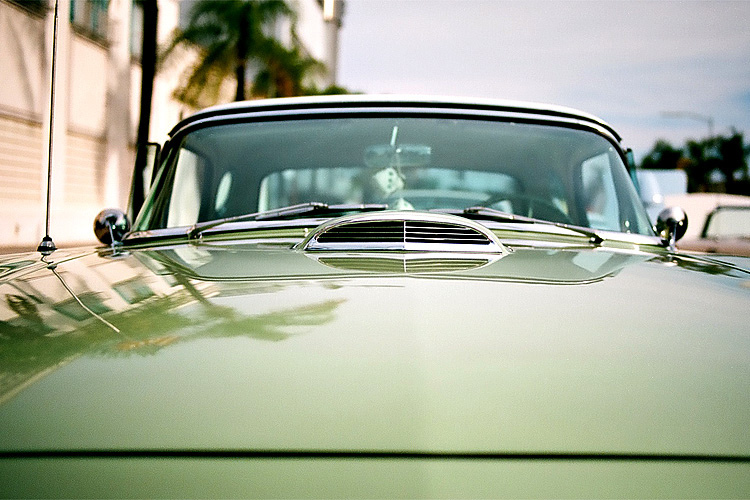 Green T_Bird | ZEISS DISTAGON F2.0 35MM <br> Click image for more details, Click <b>X</b> on top right of image to close