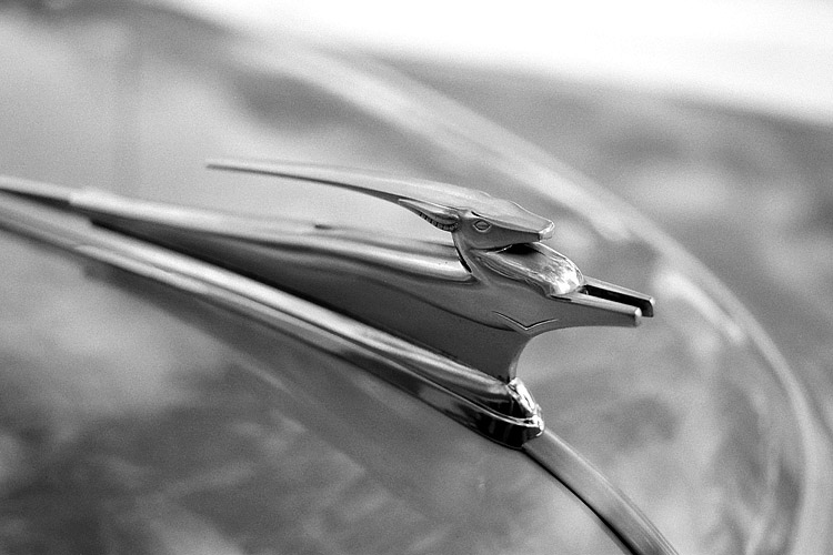 Hood Ornament #2 | ZEISS MAKRO PLANAR F2.0 50MM <br> Click image for more details, Click <b>X</b> on top right of image to close
