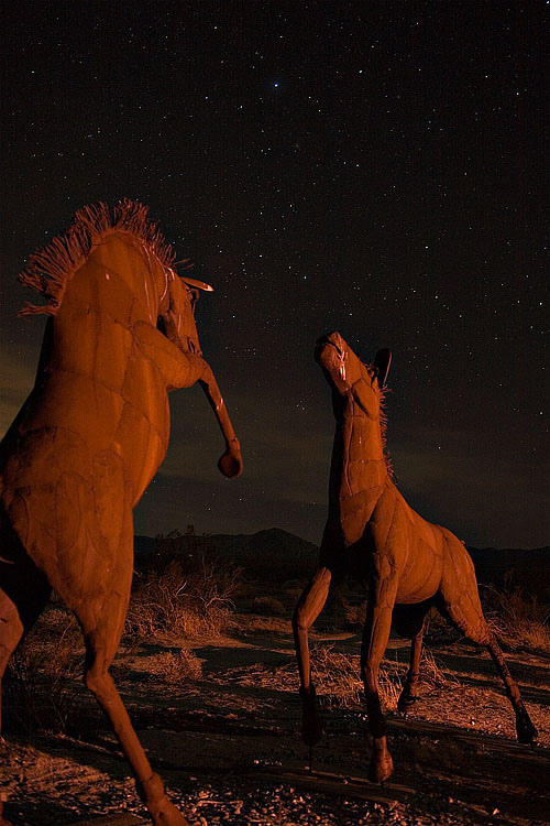 Horses at Night #1 | ZEISS DISTAGON F2.0 35MM <br> Click image for more details, Click <b>X</b> on top right of image to close