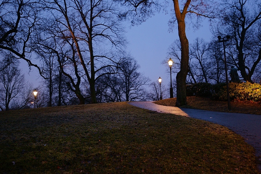 Empty park | ZEISS ZA VARIO-SONNAR F2.8 16–35MM <br> Click image for more details, Click <b>X</b> on top right of image to close