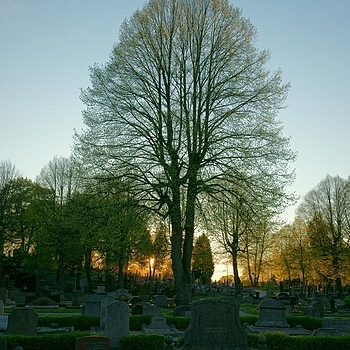 End of life, end of day... | ZEISS ZA VARIO-SONNAR F2.8 16–35MM