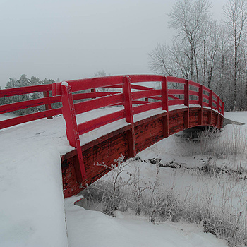 The red bridge | ZEISS DISTAGON F2.8 21MM