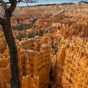Bryce Canyon, Utah US | ZEISS DISTAGON F2.8 21MM <br> Click image for more details, Click <b>X</b> on top right of image to close