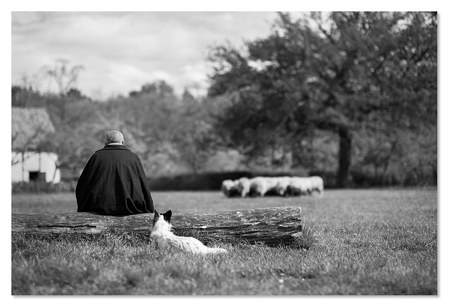 The shepherd | ZEISS PLANAR F1.4 85MM <br> Click image for more details, Click <b>X</b> on top right of image to close
