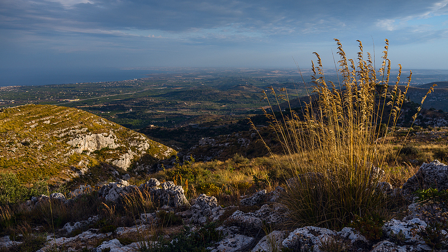 Golden hour | ZEISS ZEISS SONNAR 35MM F2 <br> Click image for more details, Click <b>X</b> on top right of image to close