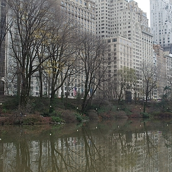 Central Park, Manhattan, NYC | ZEISS DISTAGON F2 28MM