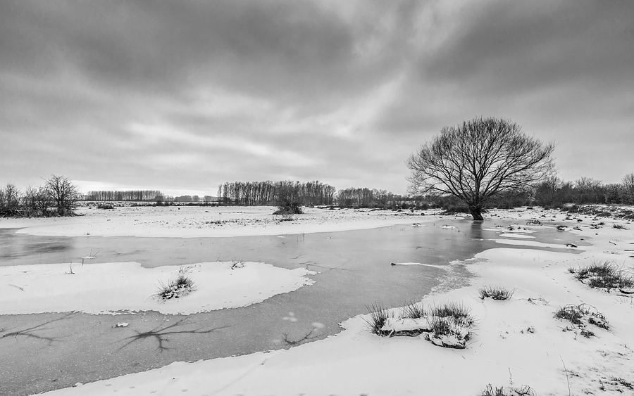 Schulenslake | ZEISS DISTAGON F2.8 15MM <br> Click image for more details, Click <b>X</b> on top right of image to close