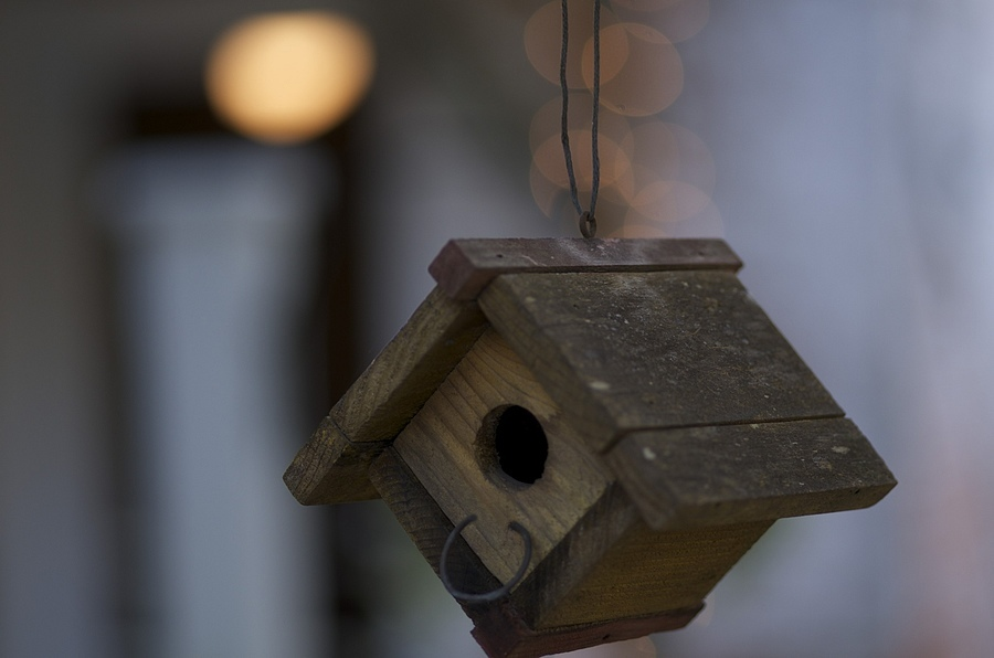 Evening Bird House | ZEISS MAKRO PLANAR F2.0 100MM <br> Click image for more details, Click <b>X</b> on top right of image to close