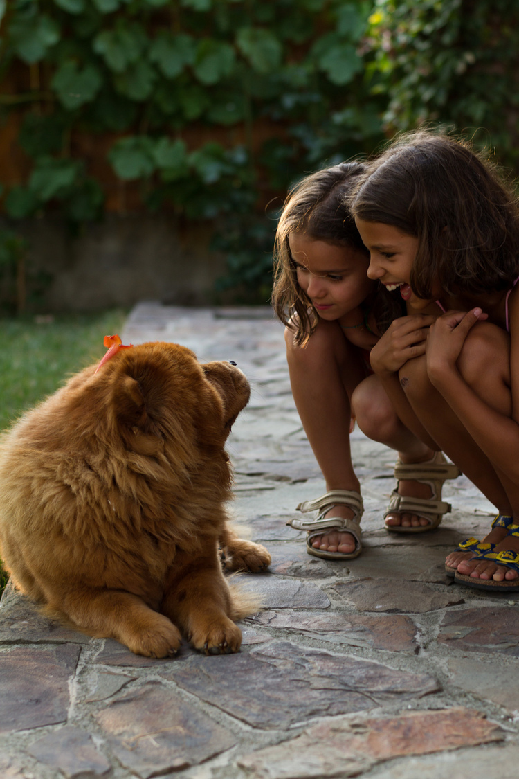 girls with Nala | ZEISS PLANAR F1.4 50MM <br> Click image for more details, Click <b>X</b> on top right of image to close