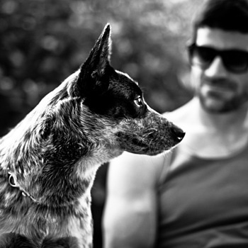 Man's Best Friend | ZEISS ZA SONNAR 135MM F1.8 <br> Click image for more details, Click <b>X</b> on top right of image to close
