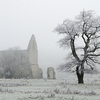 Peaceful Ruin and Tree in heavy frost | LENS MODEL NOT SET <br> Click image for more details, Click <b>X</b> on top right of image to close