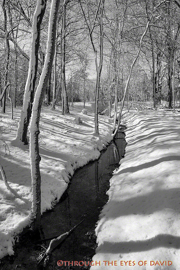 winter stream | ZEISS ZA DISTAGON 24MM F2.0 <br> Click image for more details, Click <b>X</b> on top right of image to close