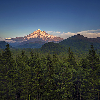 Mt. Hood from Lolo Pass | ZEISS DISTAGON F2.8 21MM