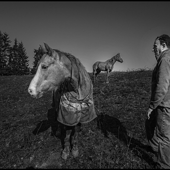 Man and horses | ZEISS G BIOGON 21MM F2.8