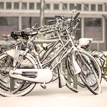 Bikes and snow