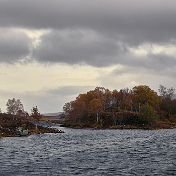 Bog Island | LENS MODEL NOT SET <br> Click image for more details, Click <b>X</b> on top right of image to close