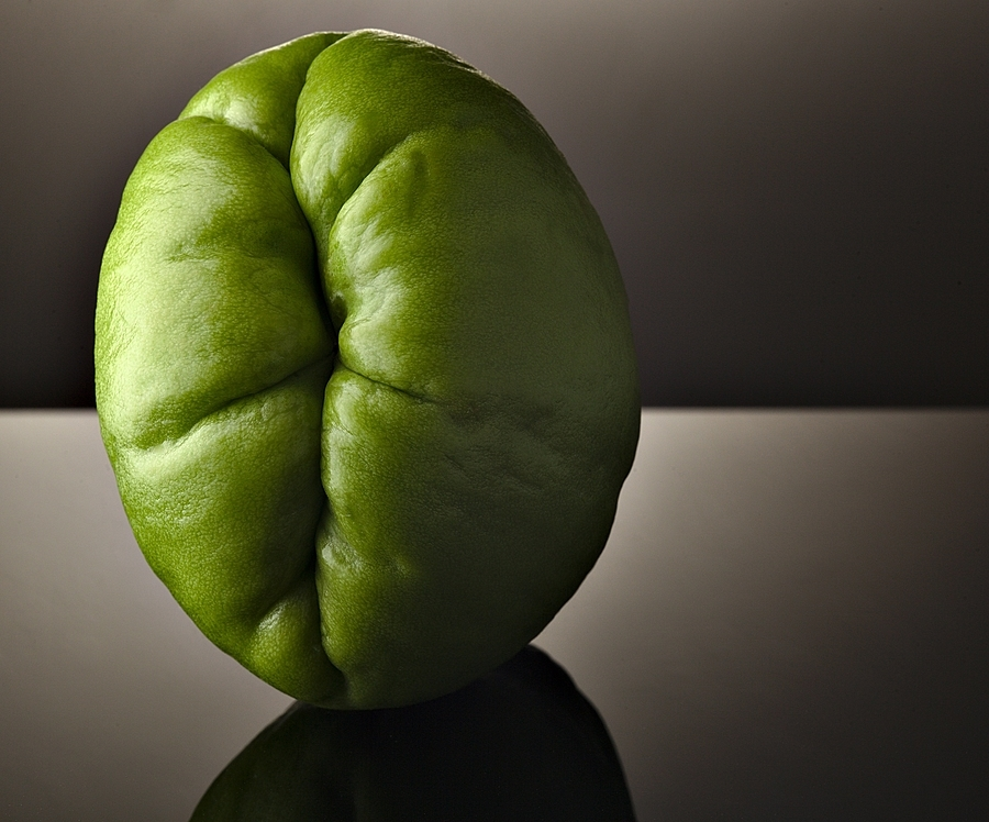 Chayote | ZEISS APO SONNAR F2 135MM <br> Click image for more details, Click <b>X</b> on top right of image to close