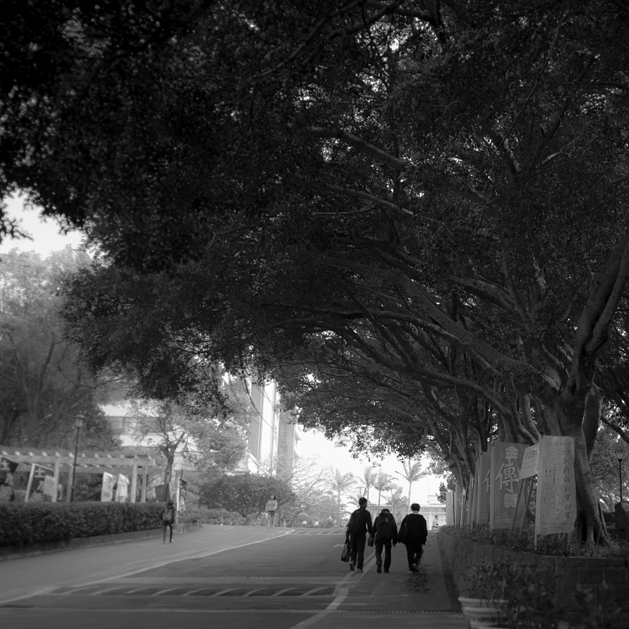 Hopping On Campus: Chapter Tamkang IX | ZEISS G BIOGON 28MM F2.8 <br> Click image for more details, Click <b>X</b> on top right of image to close