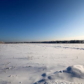 Snowfield. | ZEISS DISTAGON F2.8 15MM <br> Click image for more details, Click <b>X</b> on top right of image to close