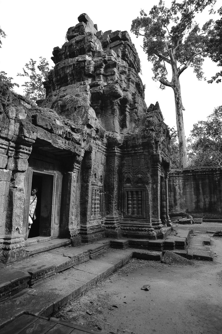 Ta Prohm temple | ZEISS ZS DISTAGON F2.0 35MM <br> Click image for more details, Click <b>X</b> on top right of image to close