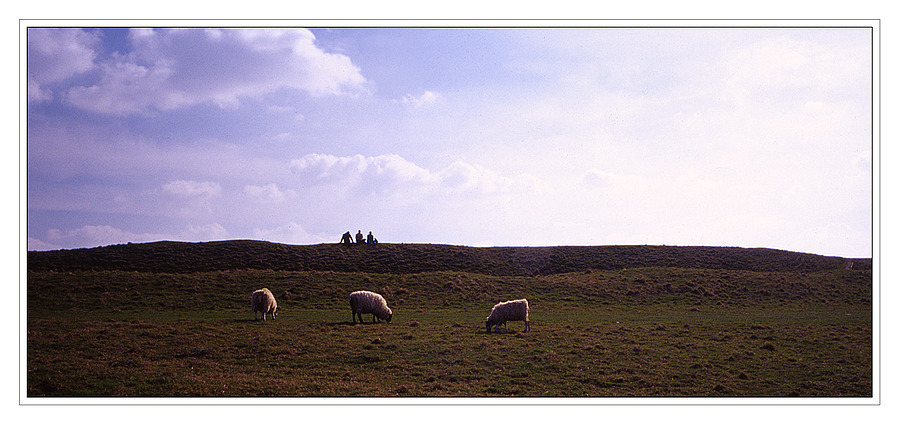 3 men and 3 sheep | ZEISS G PLANAR 45MM F2 <br> Click image for more details, Click <b>X</b> on top right of image to close