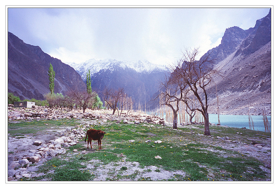 gojal, Upper Hunza | ZEISS G BIOGON 21MM F2.8 <br> Click image for more details, Click <b>X</b> on top right of image to close