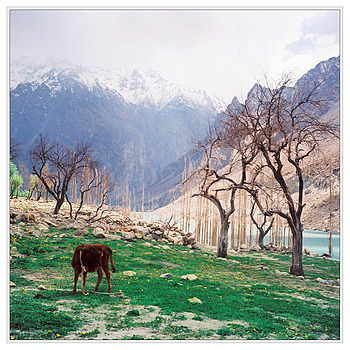 Gojal, Upper Hunza | ZEISS PLANAR 75MM F3.5 TLR