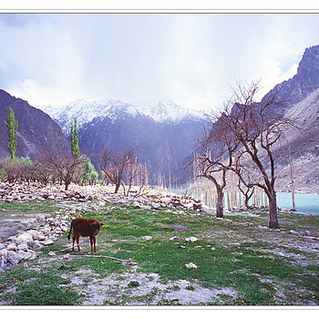 gojal, Upper Hunza | ZEISS G BIOGON 21MM F2.8