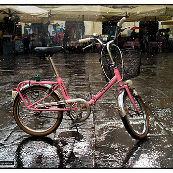 Pink bicycle in the rain, Lucca , Italy | ZEISS ZM BIOGON F2.0 35MM <br> Click image for more details, Click <b>X</b> on top right of image to close