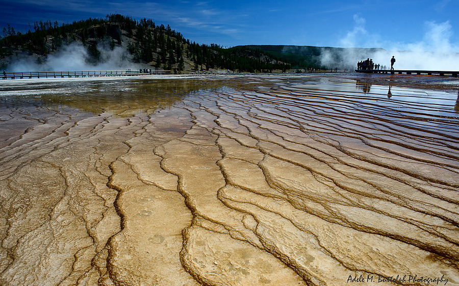Yellowstone National Park | ZEISS DISTAGON F2.8 25MM <br> Click image for more details, Click <b>X</b> on top right of image to close