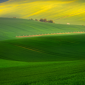 South Moravian <4 | LENS MODEL NOT SET <br> Click image for more details, Click <b>X</b> on top right of image to close