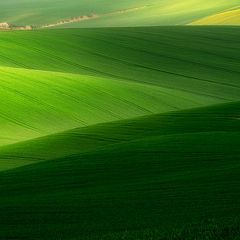 South Moravian <5> | LENS MODEL NOT SET <br> Click image for more details, Click <b>X</b> on top right of image to close