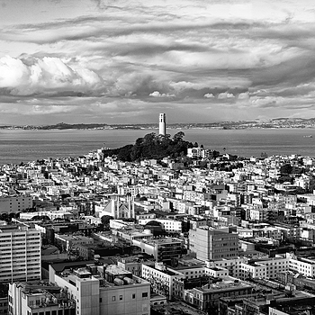 San Francisco Coit Tower | ZEISS SONNAR 55MM F1.8 FE ZA <br> Click image for more details, Click <b>X</b> on top right of image to close