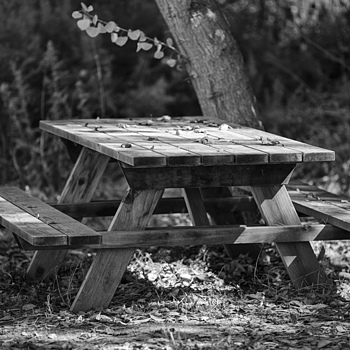 Picnic Table | ZEISS APO SONNAR F2 135MM <br> Click image for more details, Click <b>X</b> on top right of image to close