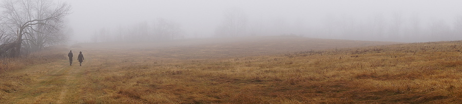 Fog Panorama | LENS MODEL NOT SET <br> Click image for more details, Click <b>X</b> on top right of image to close