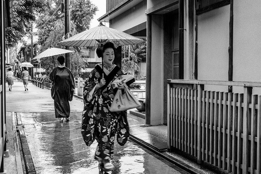 Geisha | ZEISS VARIO-TESSAR 16-70MM F4 ZOOM <br> Click image for more details, Click <b>X</b> on top right of image to close
