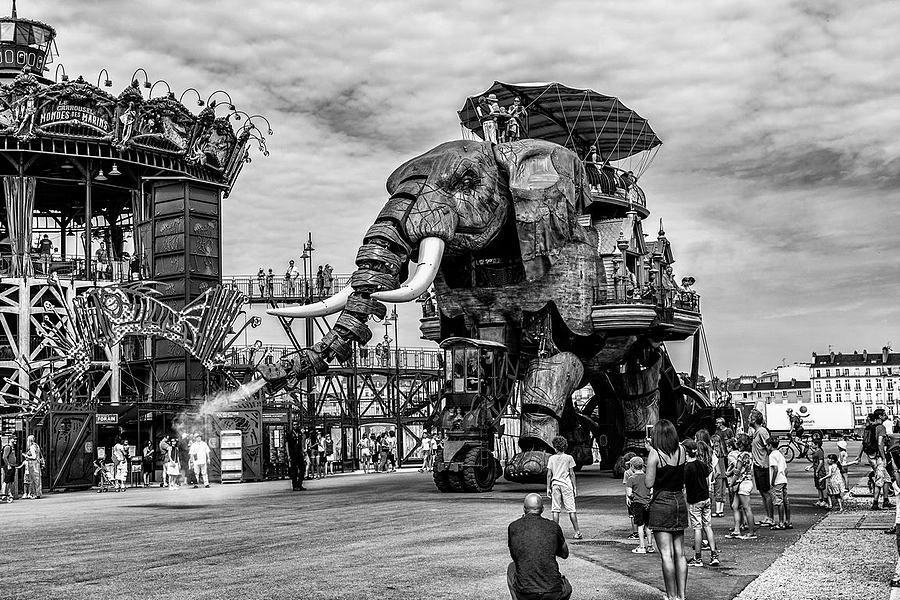 The Great Elephant | ZEISS VARIO-TESSAR 16-70MM F4 ZOOM <br> Click image for more details, Click <b>X</b> on top right of image to close